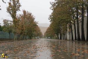 خیابان قم آباد در باران