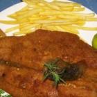 دریایی شنیسل ماهی