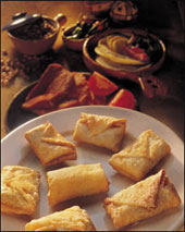 خوراک بوریتو مرغ