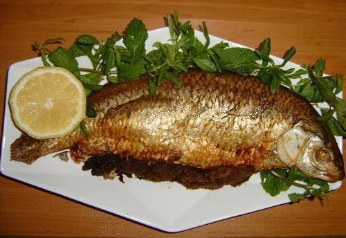 دریایی ماهی شکم پر